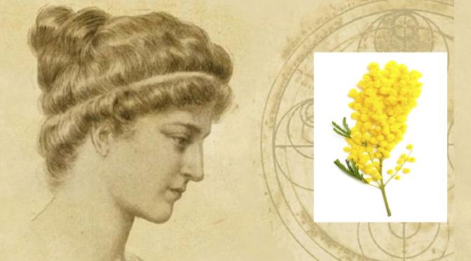 celebriamo l'8 marzo ricordando Ipazia d'Alessandria